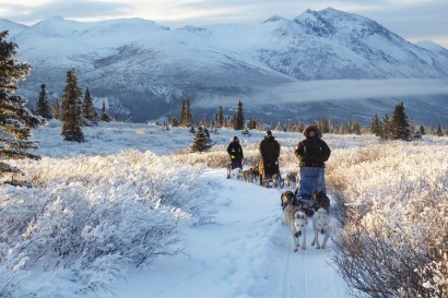 Full-Day Dogsledding Tour