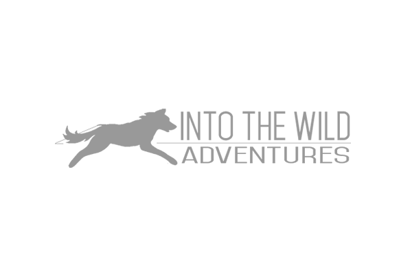 Into the Wild Adventures Logo