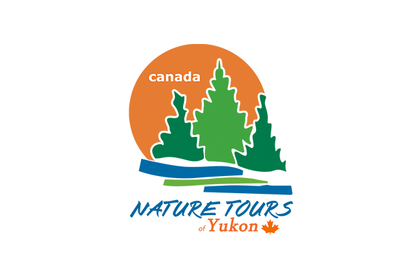 Nature Tours of Yukon Logo